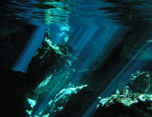 Three Simple Steps to Avoid Panic Underwater | Diver